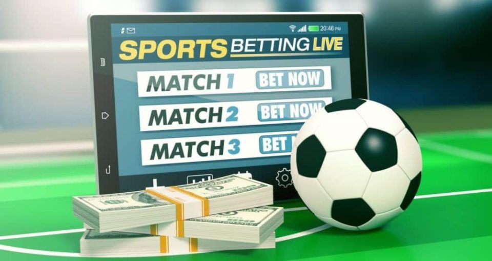 Sports betting options each way betting golf masters